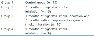 A literature review on effects of smoking on the success of